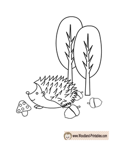Adorable Hedgehog Coloring Page