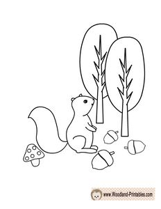 Free Printable Squirrel Coloring Page