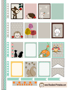 Free Printable Woodland Animals Stickers for Erin Condren Life Planner