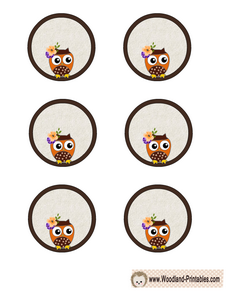 Free Printable Owl Cupcake Toppers