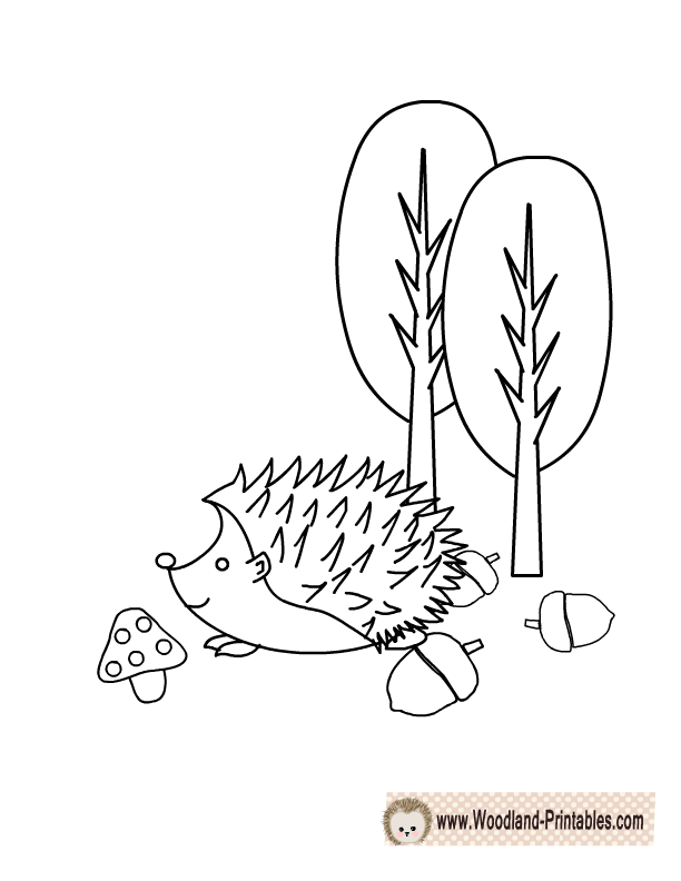 printable coloring pages woodland animals coloring pages. Black Bedroom Furniture Sets. Home Design Ideas